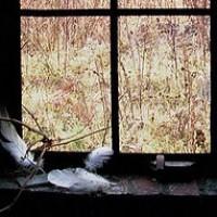 Winters window